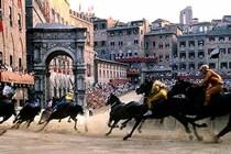 Palio di Siena 2015 - Festival | Sports in Florence