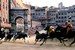 Palio di Siena - Festival | Sports in Florence.