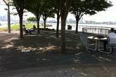 Hudson-river-park_s165x110