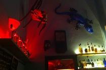 Xixbar - Gin Bar in Barcelona.