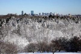 Arnold Arboretum - Park in Boston.
