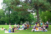 Central Park - Culture | Outdoor Activity | Park in New York.