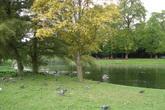 Regent's Park - Outdoor Activity | Park in London